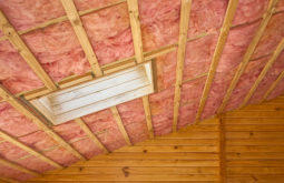 Attic Insulation Removal, Attic Cleaning
