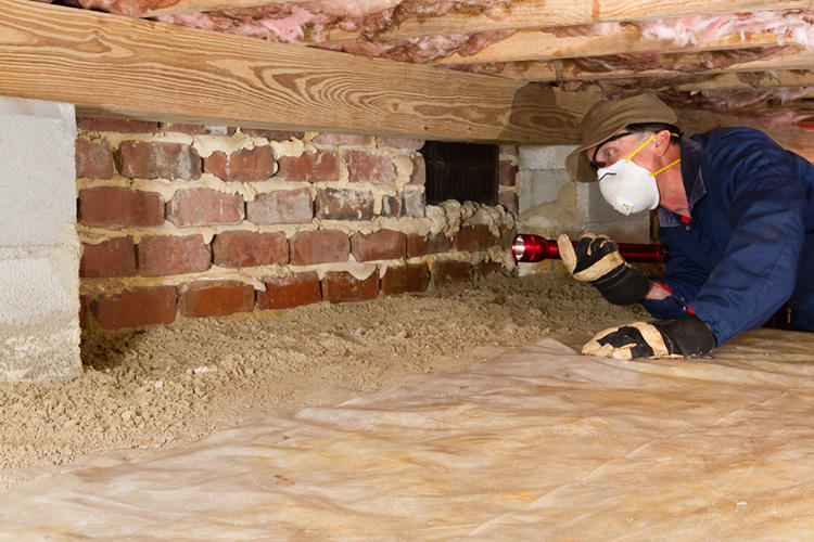 Bay Area Crawl Space Cleaning Company Oakland Element