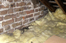when to replace insulation, bay area attic insulation services, attic insulation replacement, replacing insulation