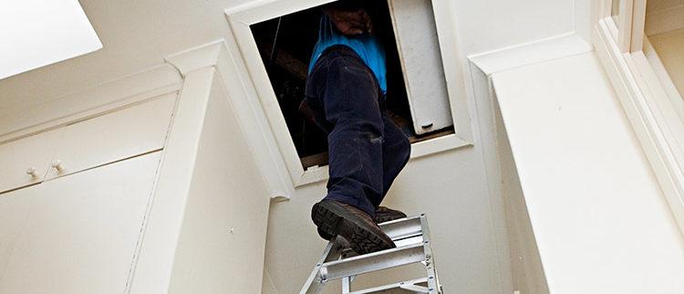 bay area, attic inspection, attic insulation, inspecting, insulating