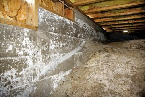 oakland crawl space cleaning company