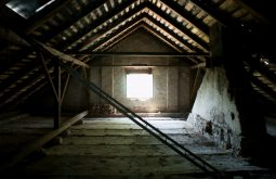 Bay Area attic cleaning