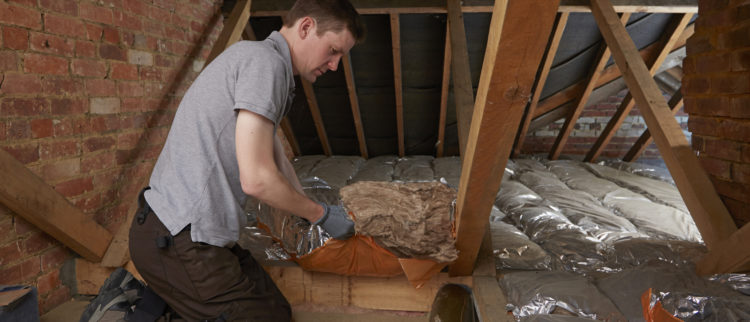 Bay Area attic insulation removal