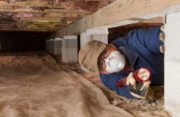 crawl space cleaning services near me