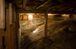 Basement Crawl Space Mold